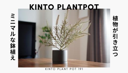 【ミニマルな鉢植え】KINTOのプラントポットがおしゃれな見た目でおすすめ